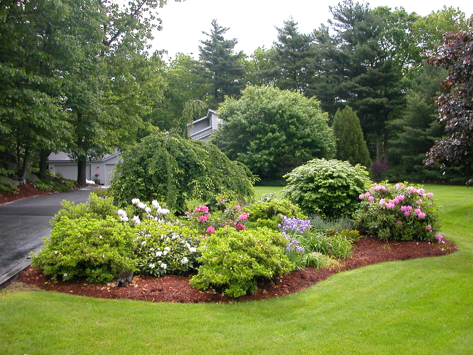 Landscaping Design Residential Lawn