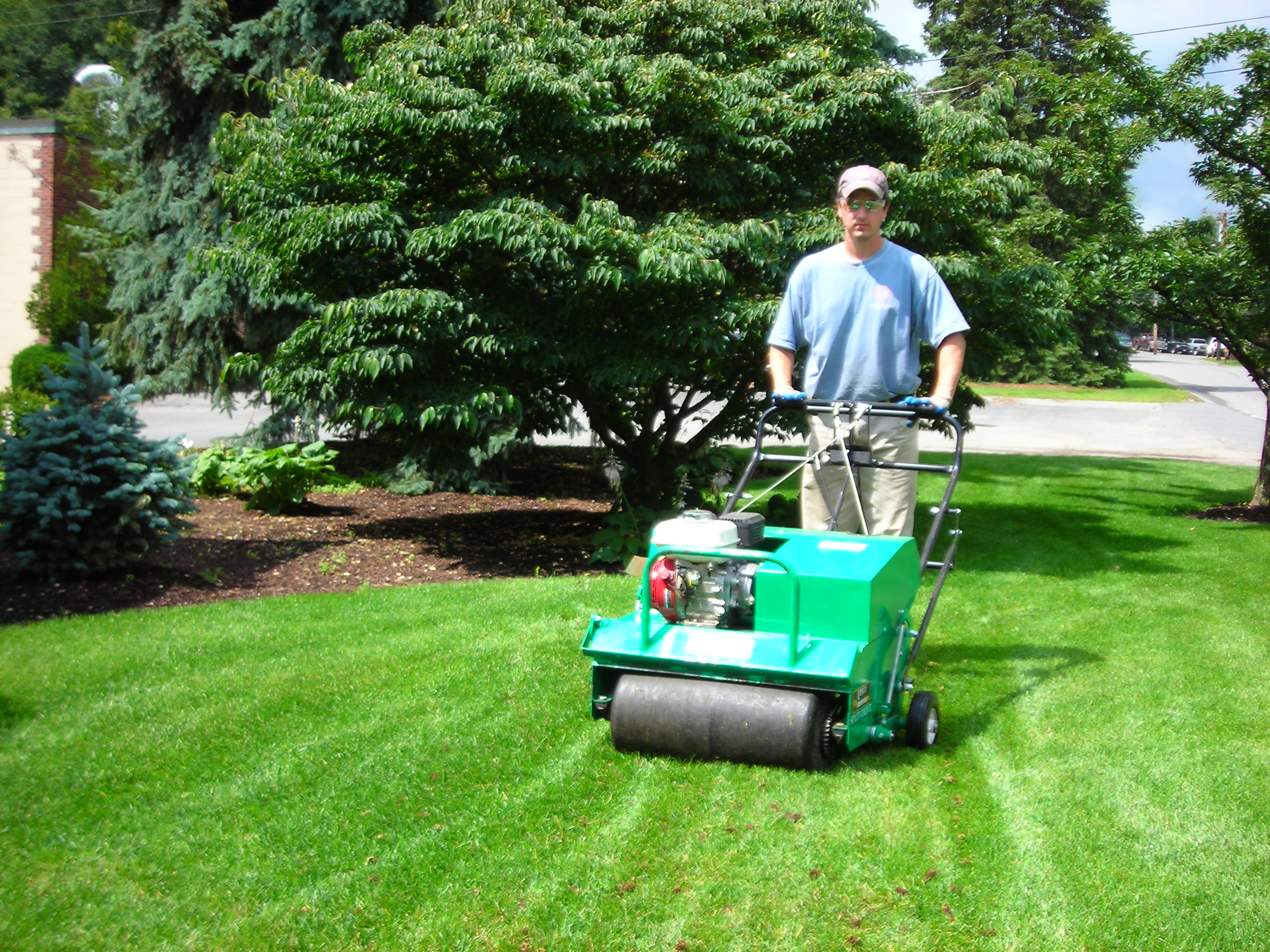 New Professional Lawn Care Services